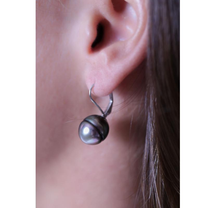 Fixed Sleeper Earrings